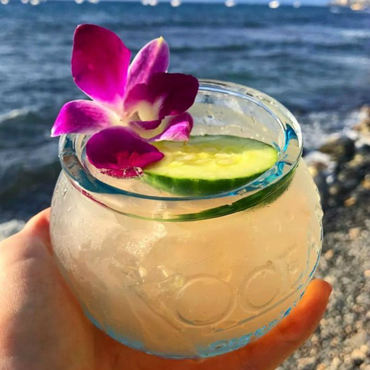 ocean vodka cocktail in hawaii - happy hour at mala lahaina maui