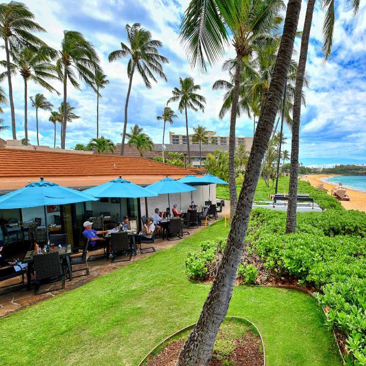 Happy Hour Castaway Cafe Lahaina Maui