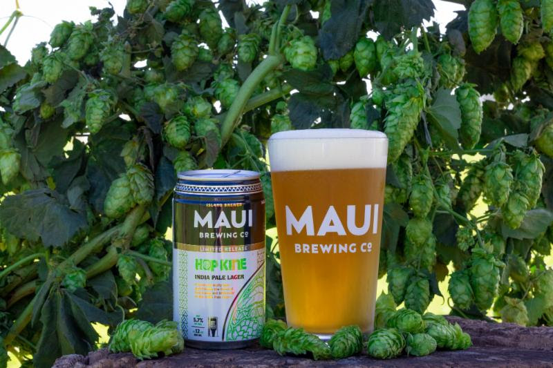 Maui Brewing Co Hop Kine