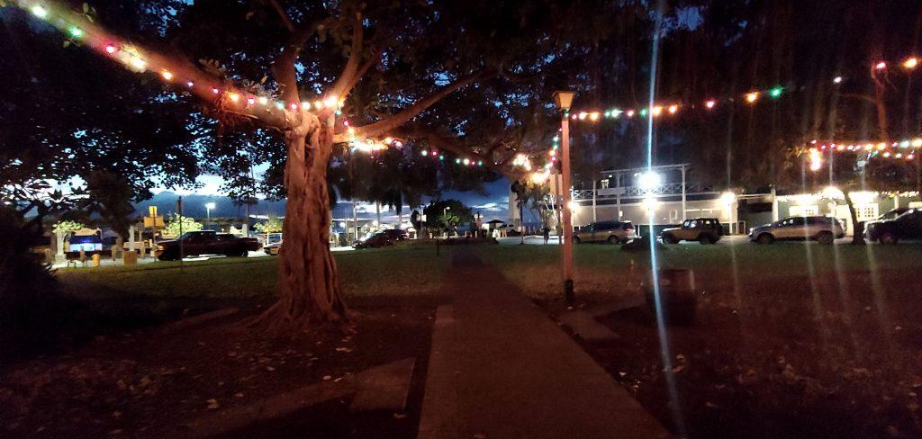 Lahaina Christmas Lights in Banyan Tree Park