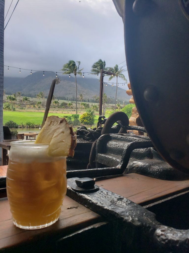 Happy Hour Cocktail on Maui with Beautiful View of Waikapu Valley Hawaii