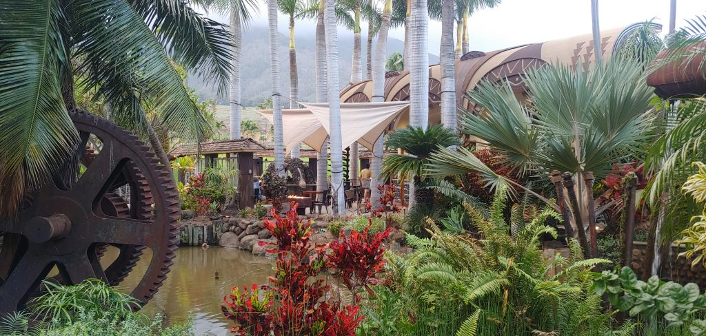 Lush beautiful greenery at Maui Tropical Plantation and Cafe OLei at the Mill House Restaurant