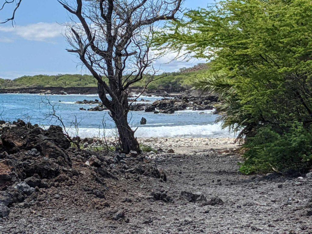Maui Lava Fields Hike