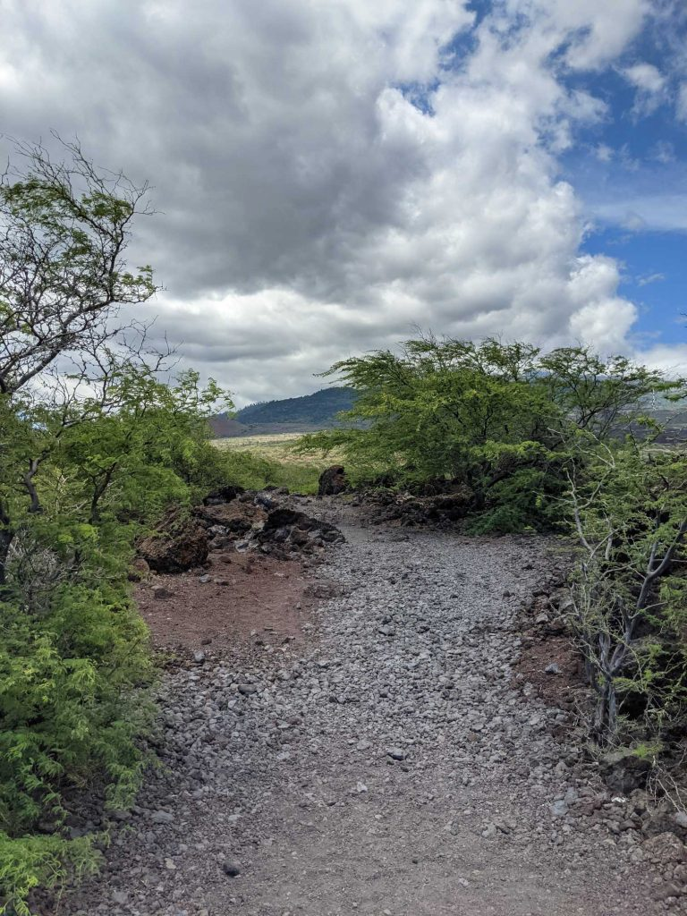 What are the best hiking trails on Maui