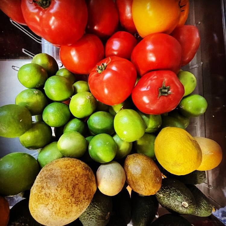 Local Maui produce - tomatos, limes