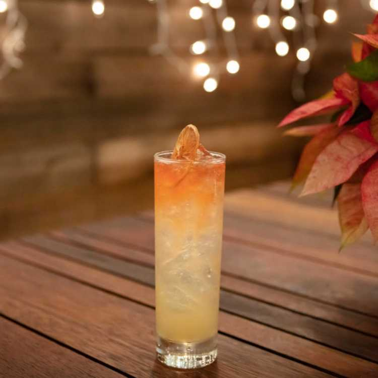 2021 Best Fall Cocktails and Drinks for Autumn and Halloween