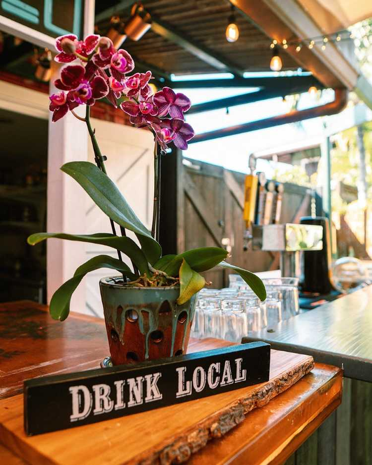 Drink local sign at Paia Maui happy hour