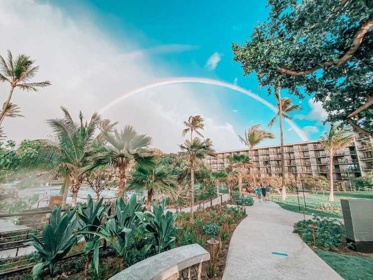 Maui hawaii rainbow resort